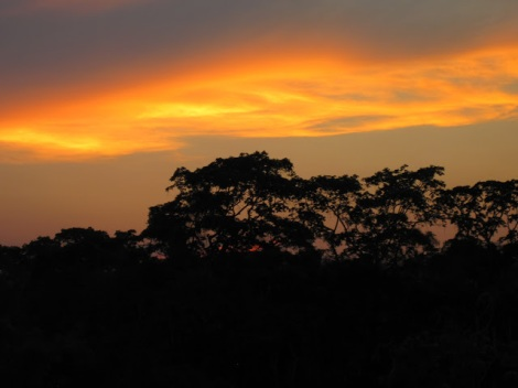 Perfect sunset, after a perfect day of elephant watching.