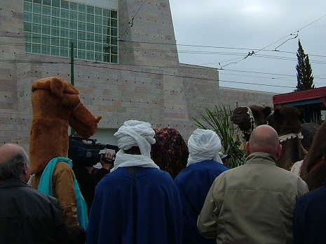 Camel costumed guy checking out actual camel.... and vice versa!